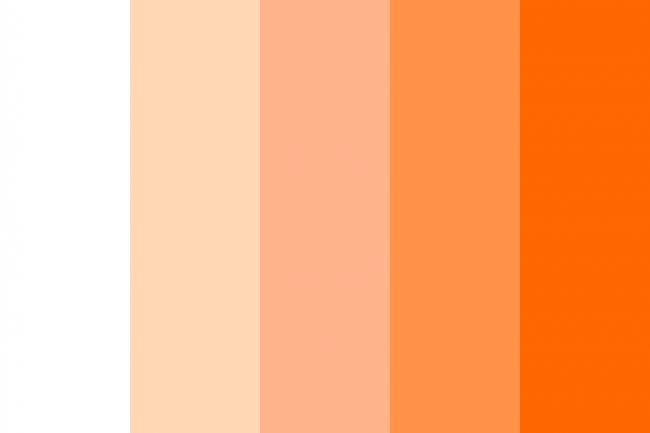 Học Cách Phối Màu Cam đẹp Mắt Paint Corner