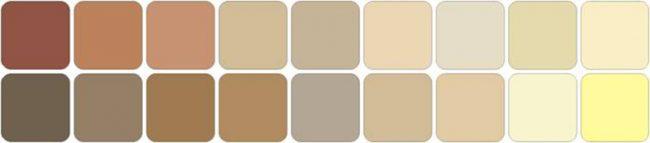 Tìm hiểu về bảng màu da người và cách chọn mỹ phẩm cho da hình ảnh 1