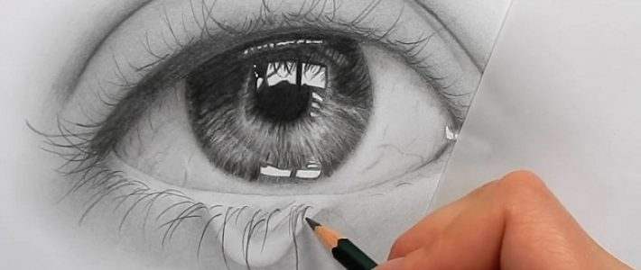 Hướng dẫn nhập môn tự học vẽ tay